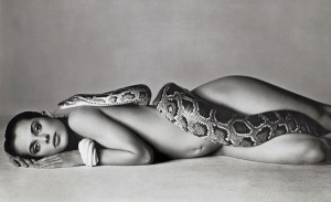 Natassia Kinksi and The Serpent - 1981