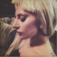 31   Lady Gaga  NIcopanda - Spring  2016