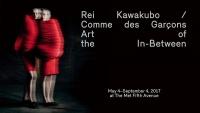 Comme des Garçons/Rei Kawakubo -  2017
